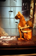Berlin Airlift Dog Parachute