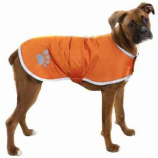 http://www.ebay.com/itm/XX-LARGE-great-dane-bull-mastiff-shepherd-boxer-rottie-DOG-COAT-JACKET-clothes-/151506943600?pt=Dog_Clothing&hash=item2346847e70