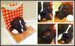 boxer-dog-birthday-cake-montage