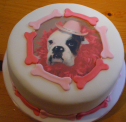 Boxer dog birthday cake pictures