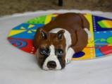 Boxer-Dog-Cake-e1386318133401