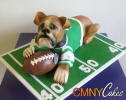 Boxer on Football Field Cake