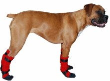 https://www.etsy.com/listing/60689737/boxer-dog-booties