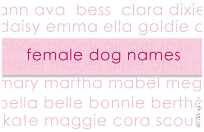 Θηλυκά ονόματα σκύλων.