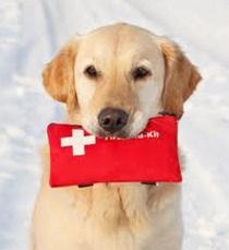 Φάρμακα πρώτης ανάγκης-κουτί πρώτων βοηθειών.