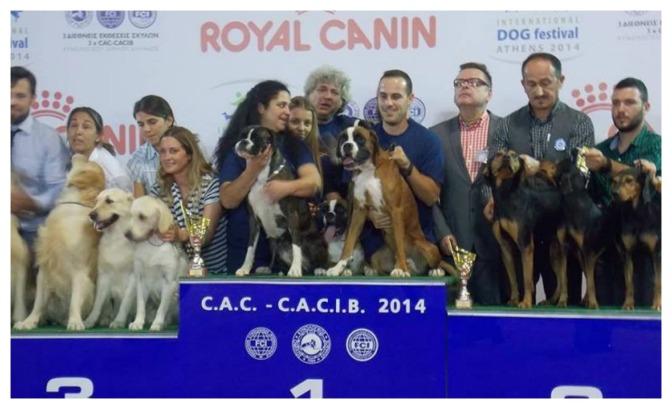 (International Dog Show in Athens 10-10-2014,κατηγορία εκτροφείων)