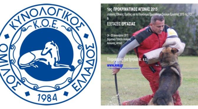1ος ΠΡΟΚΡΙΜΑΤΙΚΟΣ ΑΓΩΝΑΣ Κ.Ο.Ε.  για το ΠΑΓΚΟΣΜΙΟ ΠΡΩΤΑΘΛΗΜΑ IPO F.C.I. 2015  Σκύλων Εργασίας  & ΕΞΕΤΑΣΕΙΣ ΕΡΓΑΣΙΑΣ