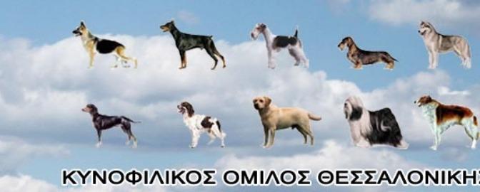 Κυνοφιλικός Όμιλος Θεσσαλονίκης 23 και 24 Μαίου 2015