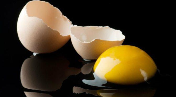 Οι κρόκοι των αυγών κάνουν το τρίχωμα του σκύλου καλύτερο;