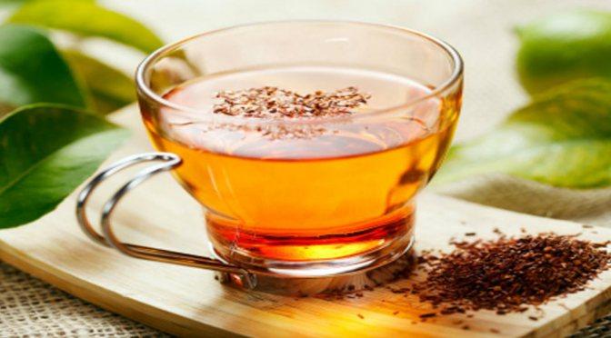 Συνταγές για λιχουδιές σκύλων με τσάι Rooibos