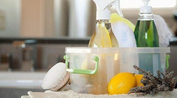 Πως να φτιάξεις φυσικά,φιλικά προς το σκύλο καθαριστικά για το σπίτι
