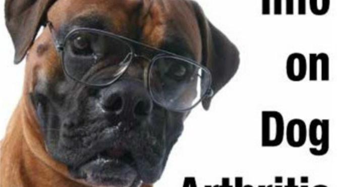 Φυσικές εναλλακτικές λύσεις για την αρθρίτιδα