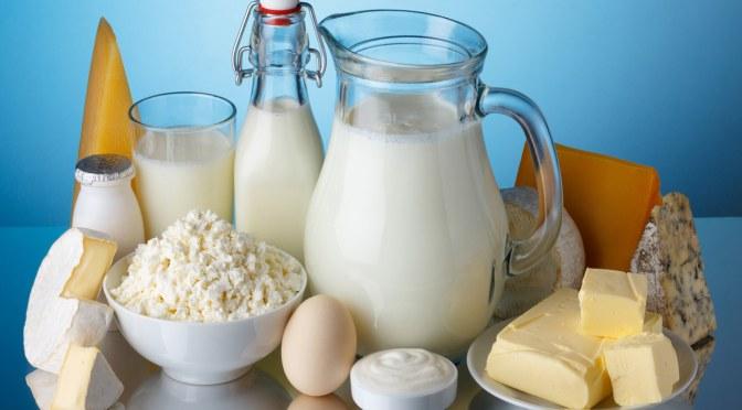 Γαλακτοκομικά προϊόντα που κάνουν καλό στους σκύλους – τυρί,κεφίρ,γιαούρτι